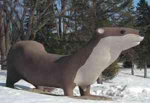 Big Otter